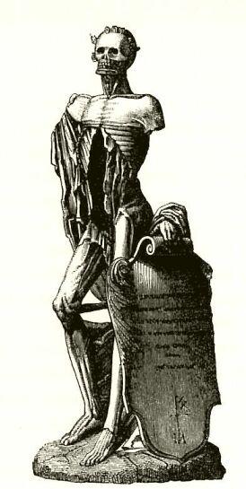 le grand squelette. Actuellement au Louvre